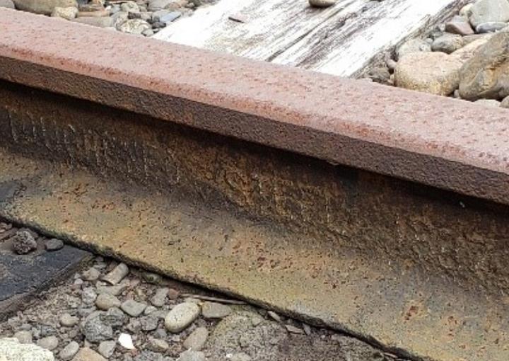 岳南電車 旧貨物線跡&古レール探訪ミニツアー