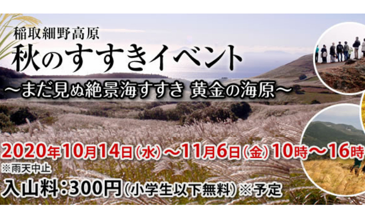 14日(水)~11月6日(金)の期間、東伊豆町で稲取細野高原秋のすすきイベントが開催されます