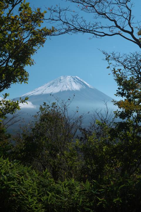 竜ヶ岳登山道 富士山