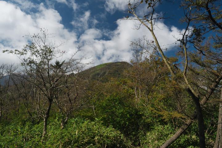 竜ヶ岳登山道 竜ヶ岳