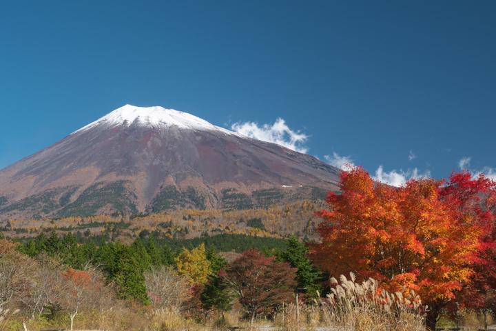 西臼塚からの紅葉と富士山