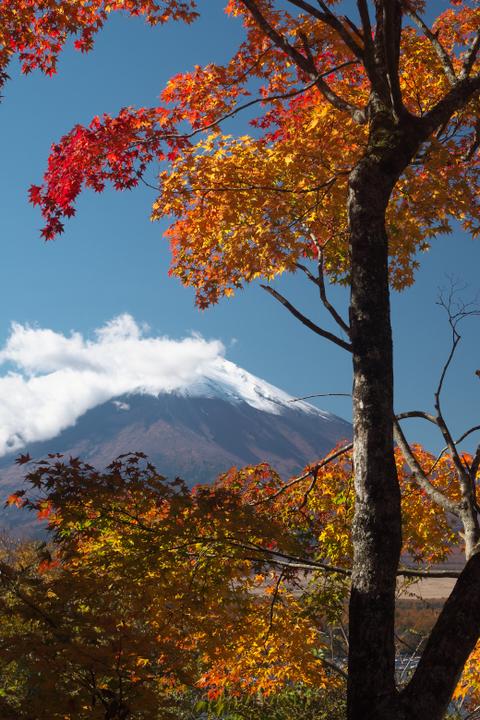 山中湖夕焼けの渚附近の紅葉と富士山2