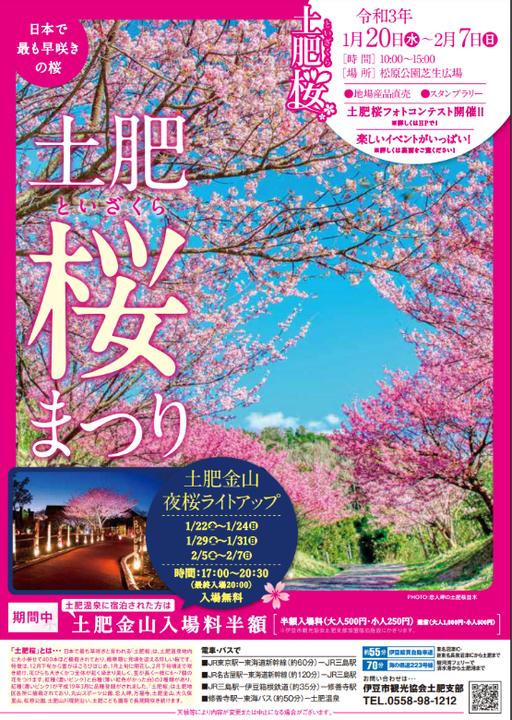 土肥桜まつり2021