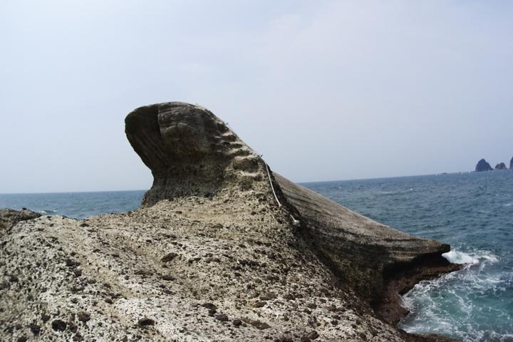 安城岬 ふれあい公園 亀甲岩12