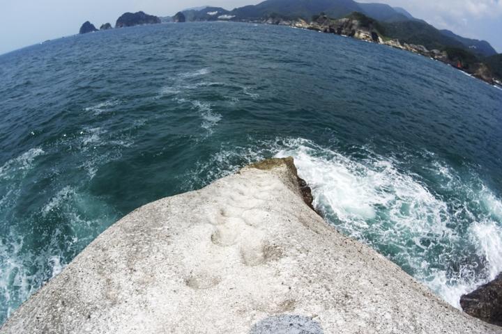 安城岬 ふれあい公園 亀甲岩3