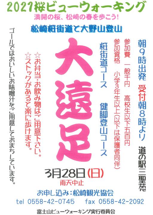 桜ビューウォーキング~満開の桜、松崎の春を歩こう!
