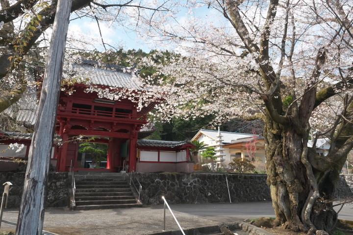 松野の妙松寺