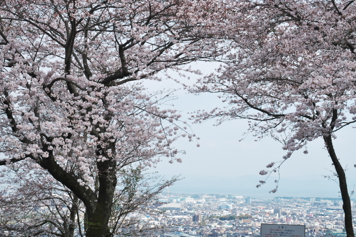 岩本山公園2