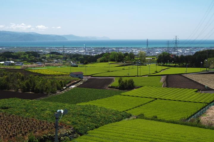 駿河湾と伊豆半島
