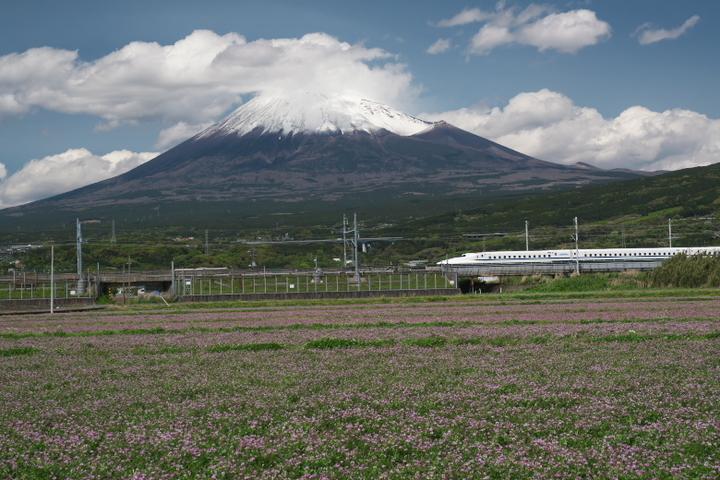 レンゲ畑と新幹線