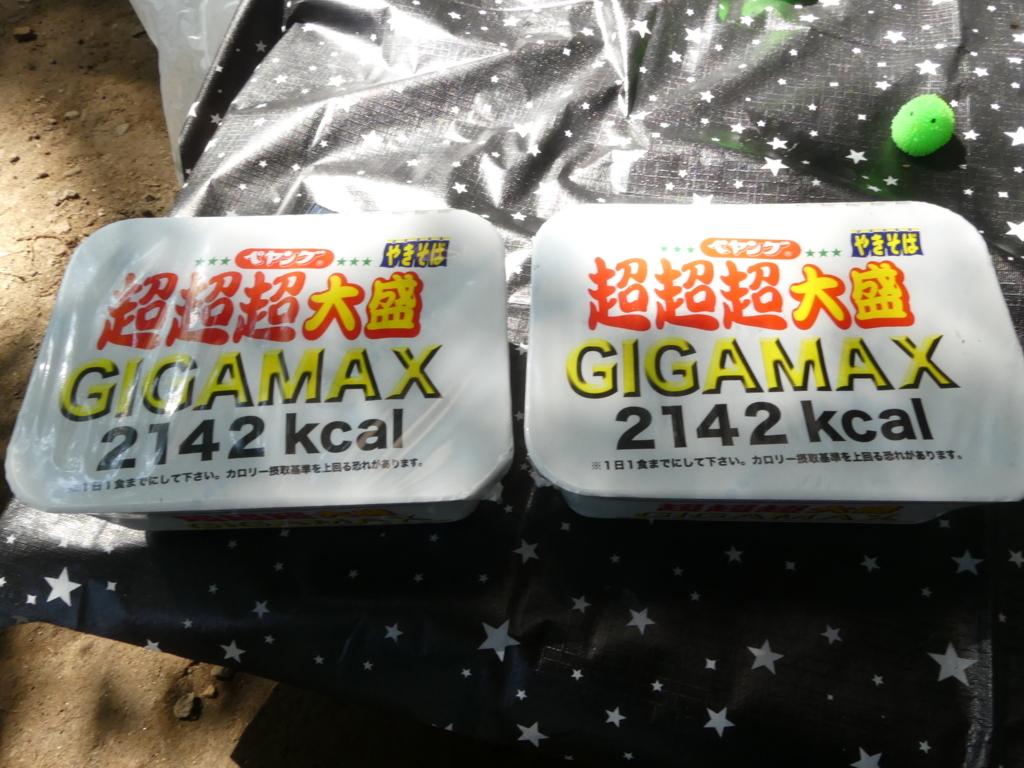 f:id:hujyoshimama:20180720155627j:plain