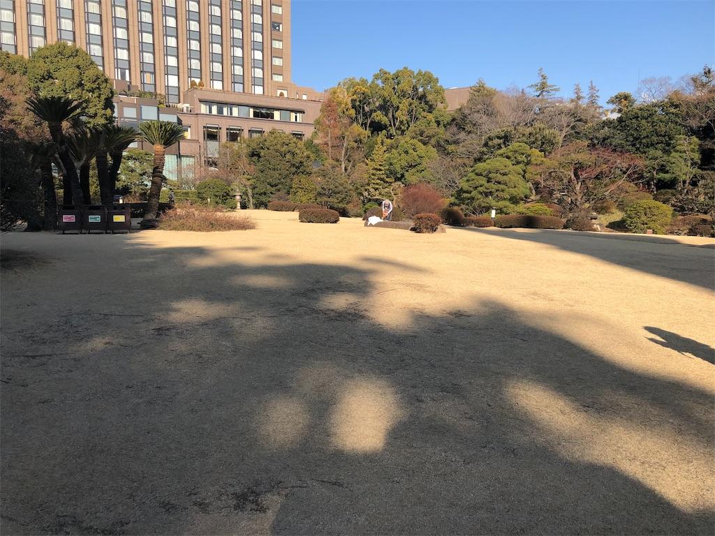 f:id:hukasara:20190217152134j:image