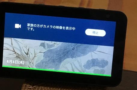 f:id:huku1910:20210603181446j:plain