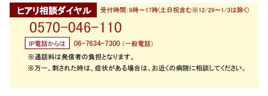 f:id:hukurou03:20171030102022p:plain