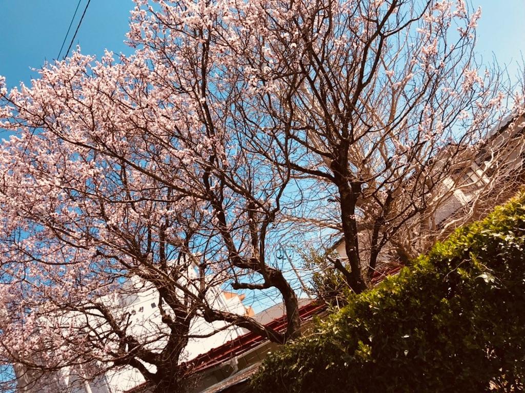 f:id:hukurou777:20180331233322j:image