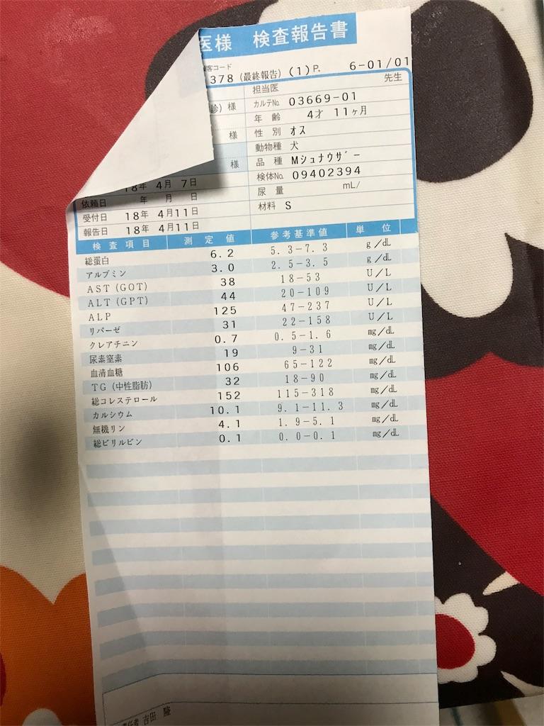 f:id:hukusuke39:20180424034733j:image