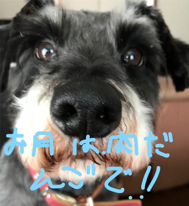 f:id:hukusuke39:20180925084120j:plain