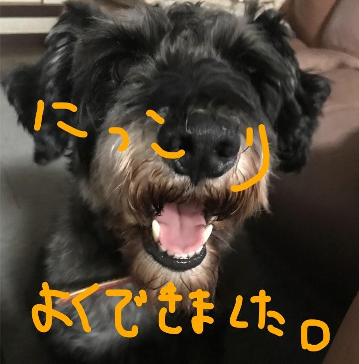 f:id:hukusuke39:20181002085117j:plain