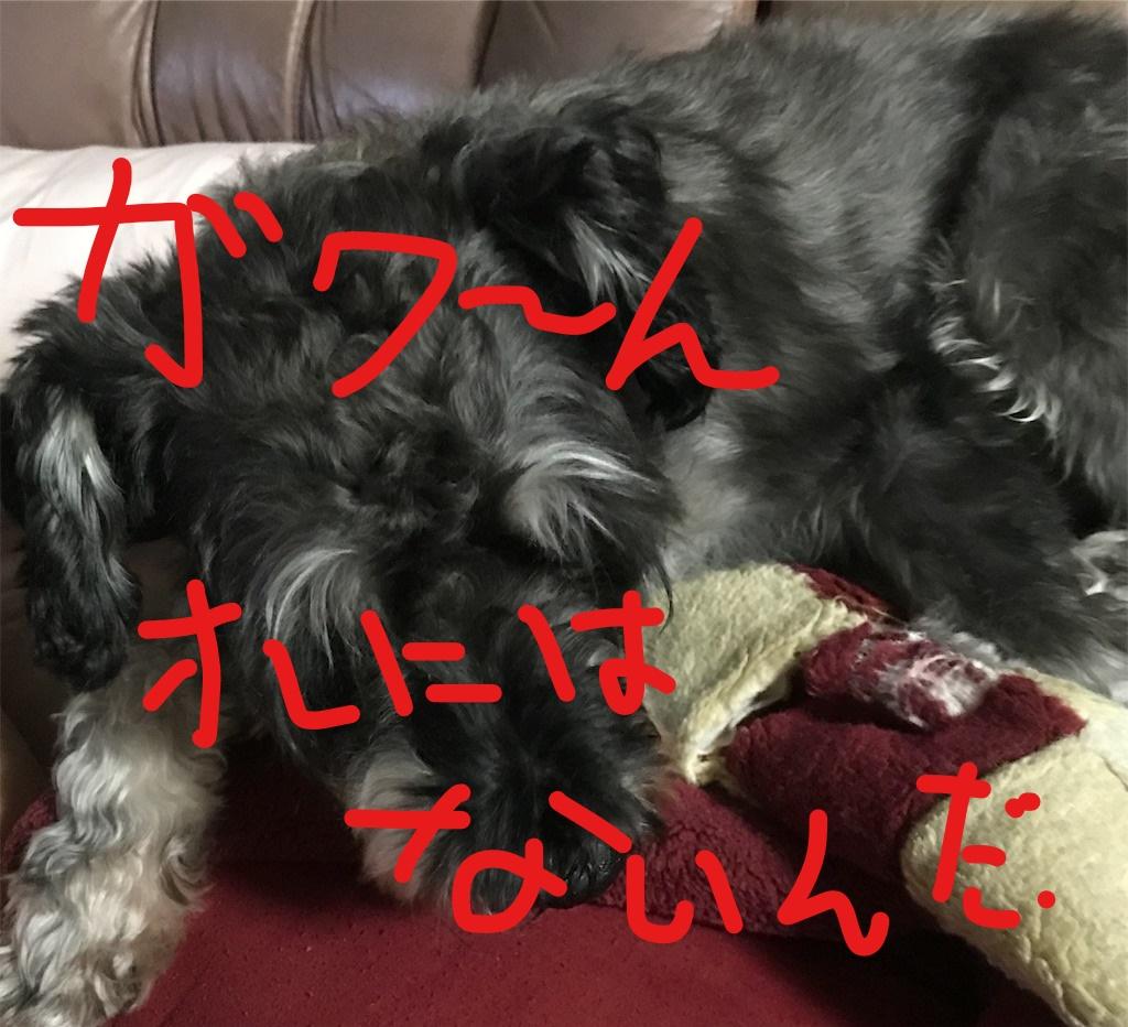 f:id:hukusuke39:20181010092131j:plain