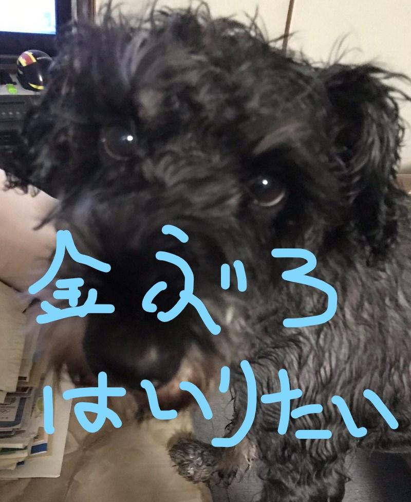 f:id:hukusuke39:20181011084629j:plain