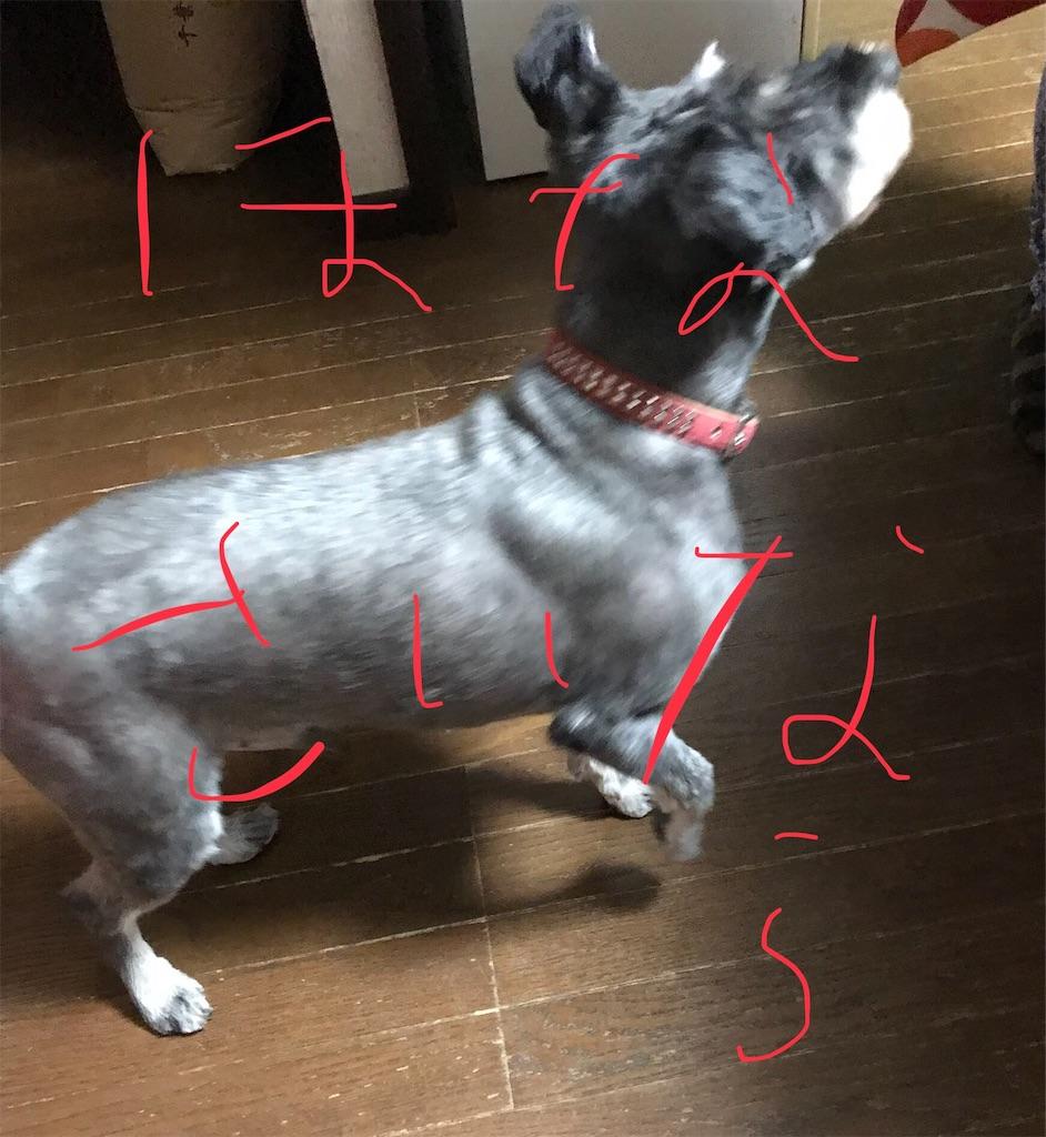 f:id:hukusuke39:20181013171658j:image