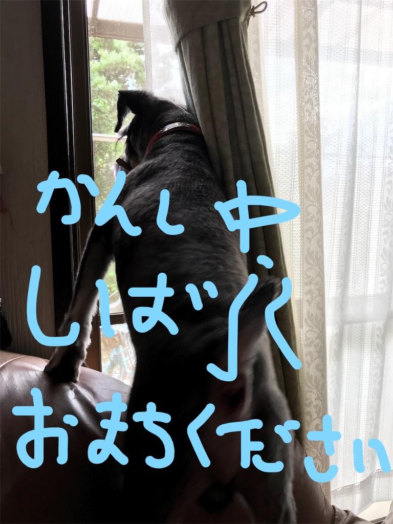 f:id:hukusuke39:20181030084416j:plain