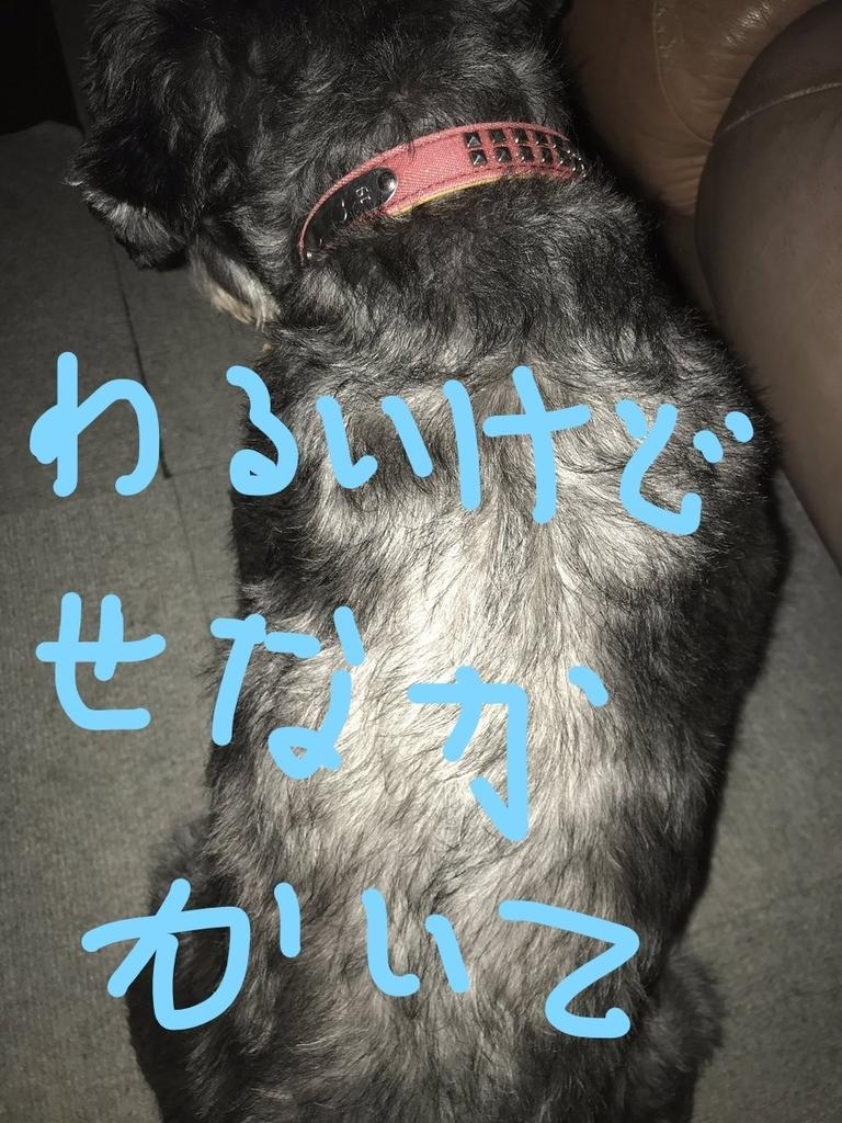 f:id:hukusuke39:20181205090755j:plain