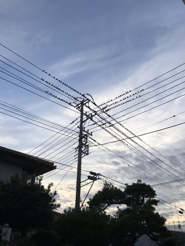 f:id:hukusuke39:20181210112247j:plain