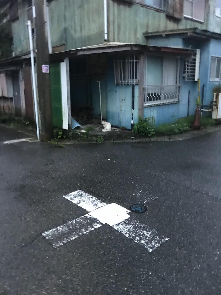 f:id:hukusuke39:20190629050337j:image