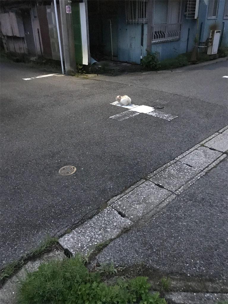 f:id:hukusuke39:20190703045503j:image