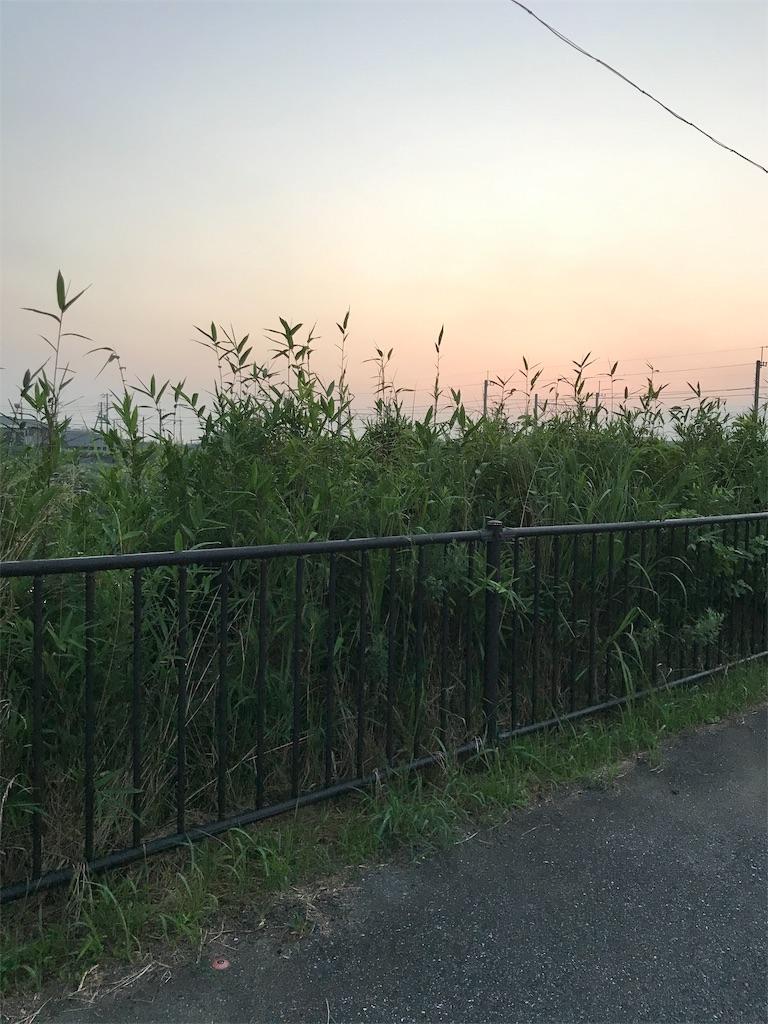 f:id:hukusuke39:20190725050025j:image