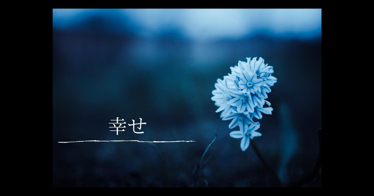 f:id:humeichan:20210303191831p:plain