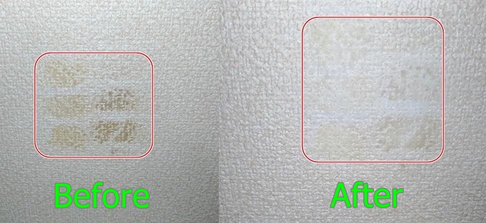 f:id:humidasu_1:20210117202054j:plain