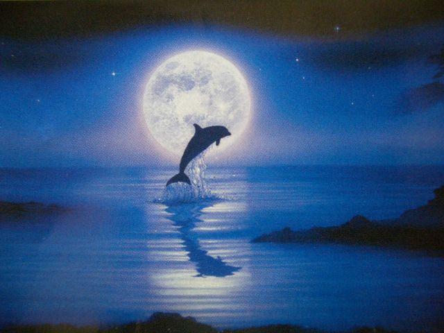 f:id:humpbackwhalex:20161218133406j:plain
