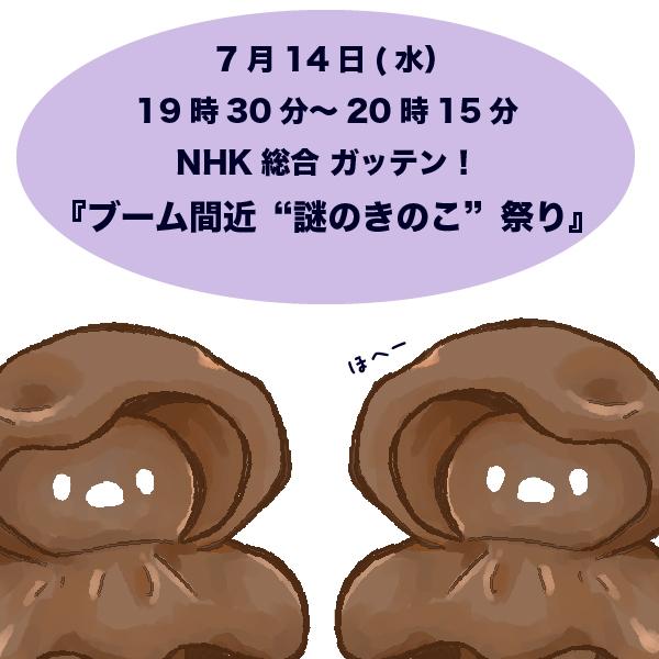 f:id:hungi3:20210713090142j:plain