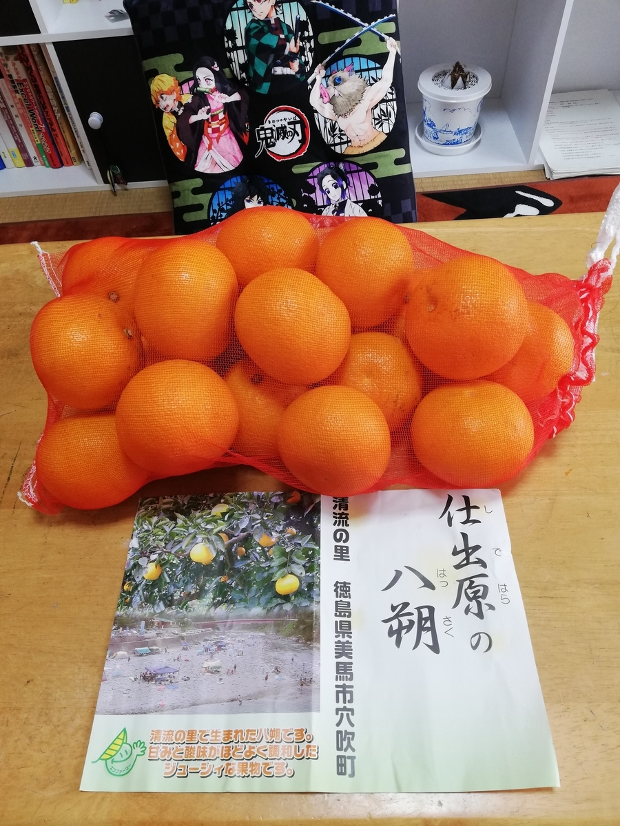 f:id:hunnwariyuki:20210208155131j:plain