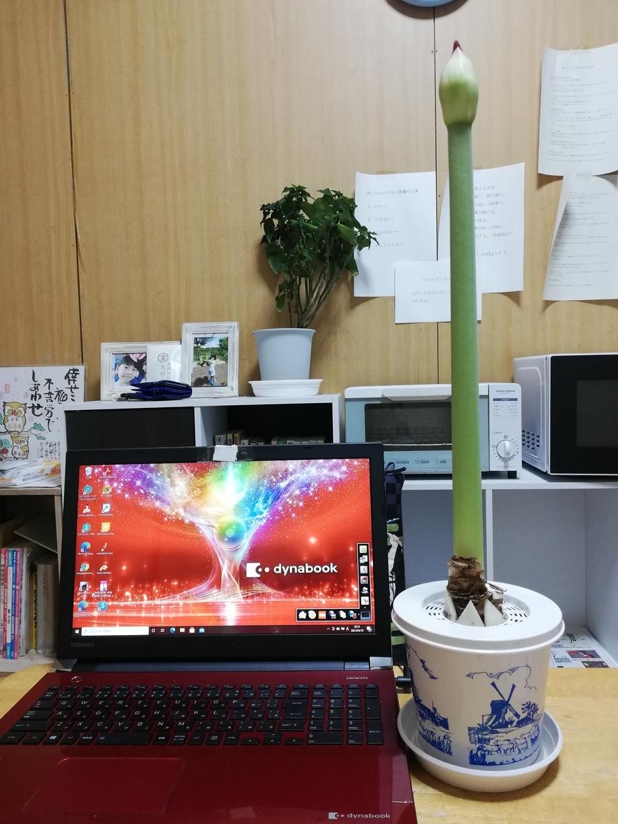 f:id:hunnwariyuki:20210410202942j:plain