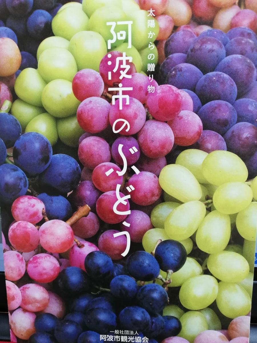 f:id:hunnwariyuki:20210830140731j:plain