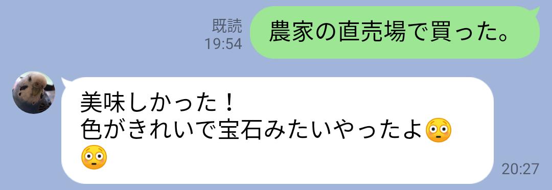 f:id:hunnwariyuki:20210830145146j:plain