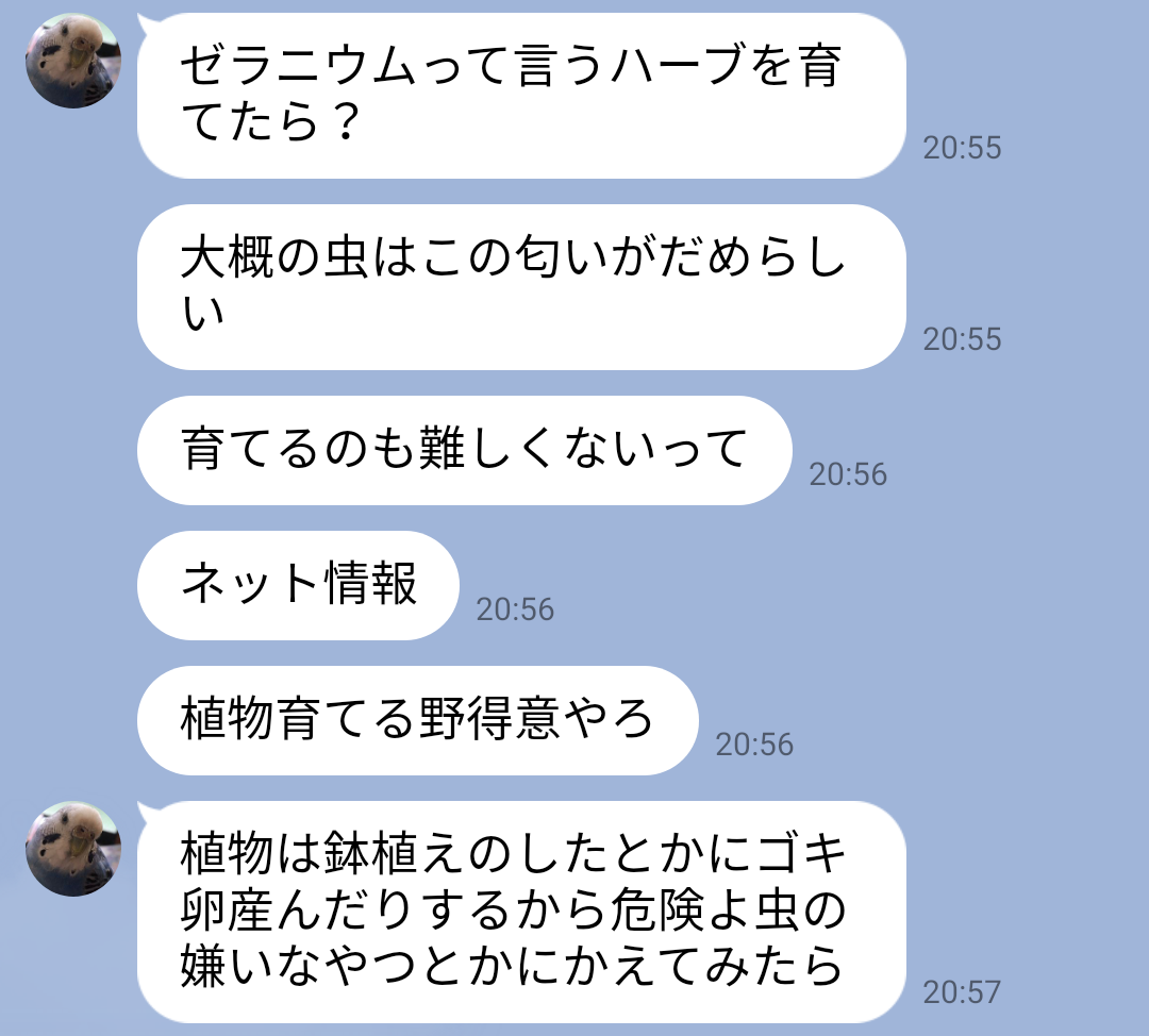 f:id:hunnwariyuki:20210915164438j:plain