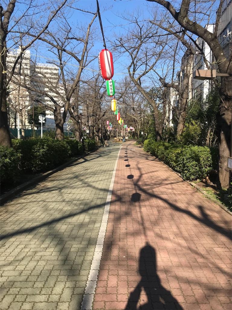 f:id:hurdler_chitoku:20190314131355j:image