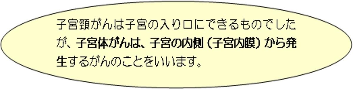 f:id:hutawa-ohana:20190706125242j:plain