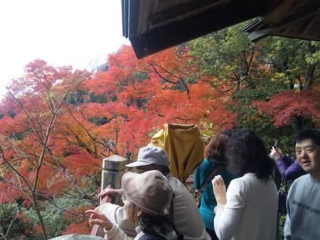 f:id:huton-takahara:20101123125615j:image
