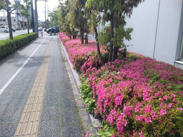 f:id:huton-takahara:20110531083535j:image