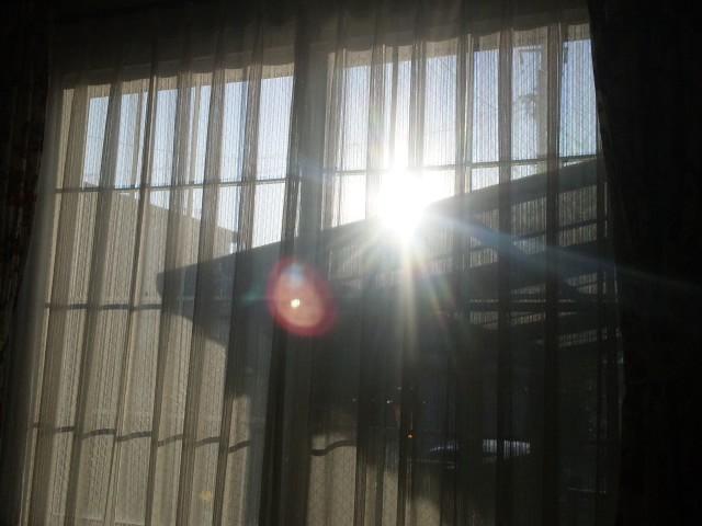f:id:huton-takahara:20120221073703j:image