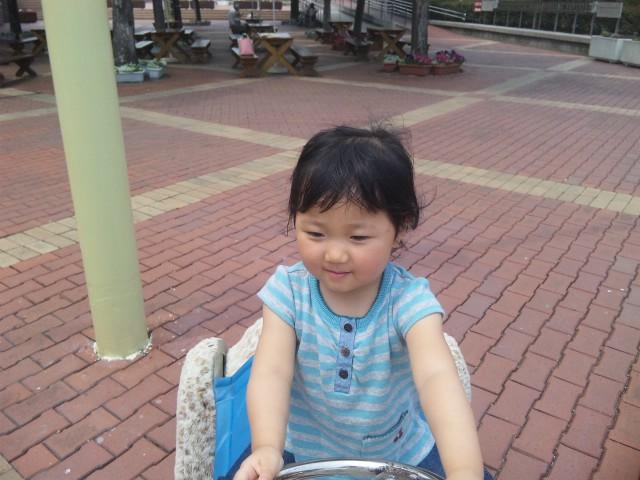 f:id:huton-takahara:20120529125709j:image