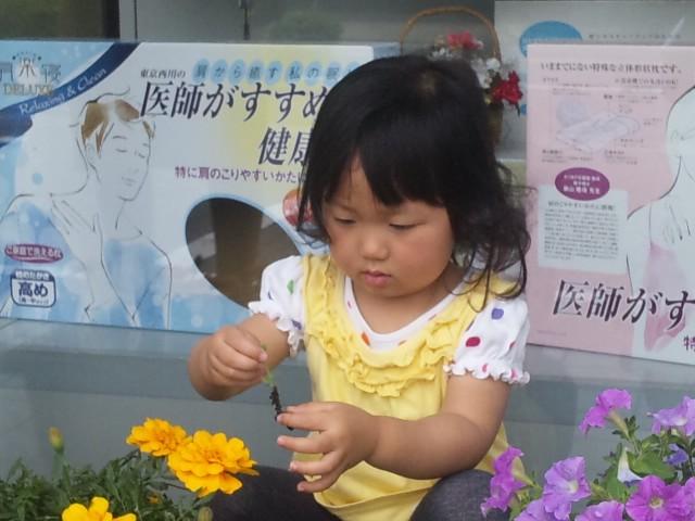 f:id:huton-takahara:20120614104454j:image