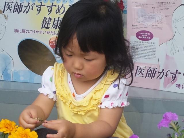 f:id:huton-takahara:20120614104517j:image