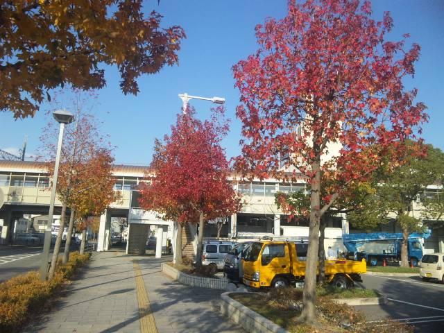 f:id:huton-takahara:20121120084344j:image