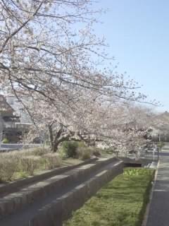 f:id:huton-takahara:20130326083612j:image